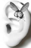 Malco y su oreja