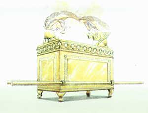 arca oro