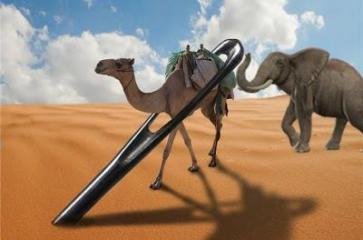 elefante-camello